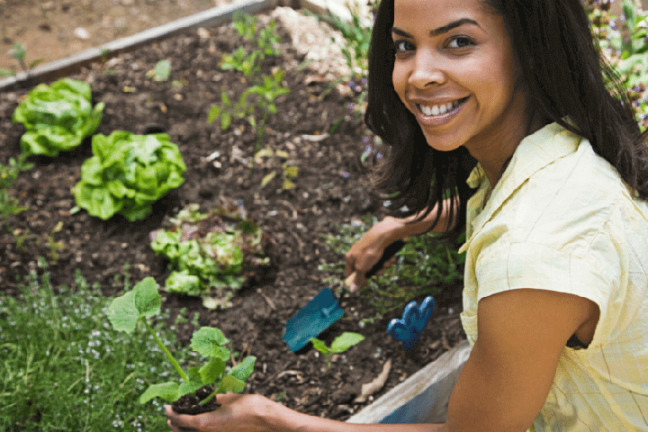 Gardening Therapy in Mental Health